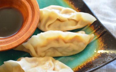 Curried Pumpkin Gyoza